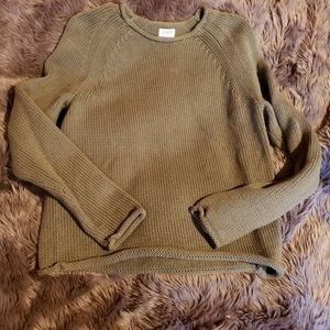 NWOT J.Crew Never worn Green roll neck sweater